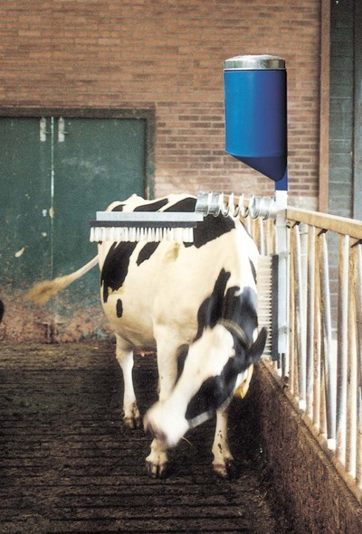 Cattlebrush with dispenser